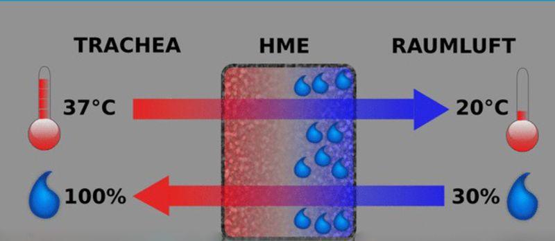 Stimmprothese » HME-Filter